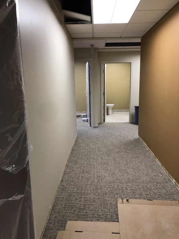 Carpeting in hallway leading to employee restroom with new painted walls.